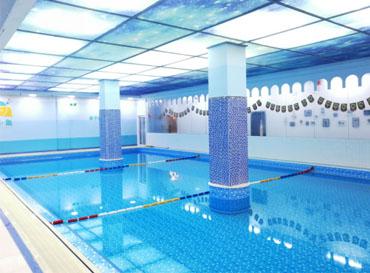 Small fish swimming pool